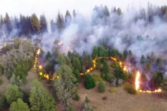 Incendio en la zona de Loma del Medio Sur.