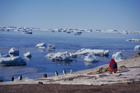 Argentina cumple 116 años de presencia soberana y científica en la Antártida