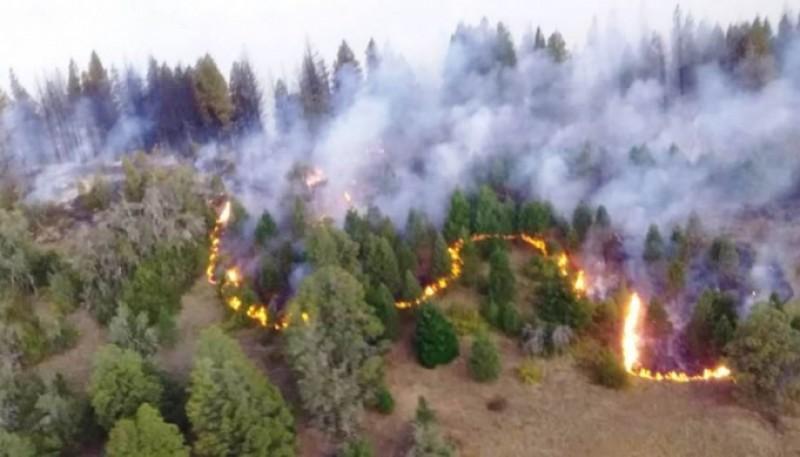 Brigadistas controlaron incendio en la zona de Lago Puelo