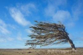 Alerta por vientos fuertes en Santa Cruz, Tierra del Fuego e Islas Malvinas