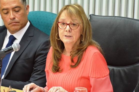 Alicia Kirchner al hablar ante la Cámara de Diputados (C.R)