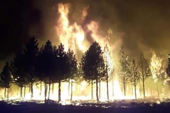 El incendio continuó durante la noche.