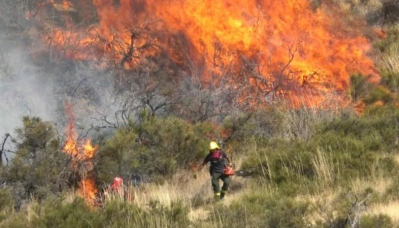 El fuego consumió amplias hectáreas.