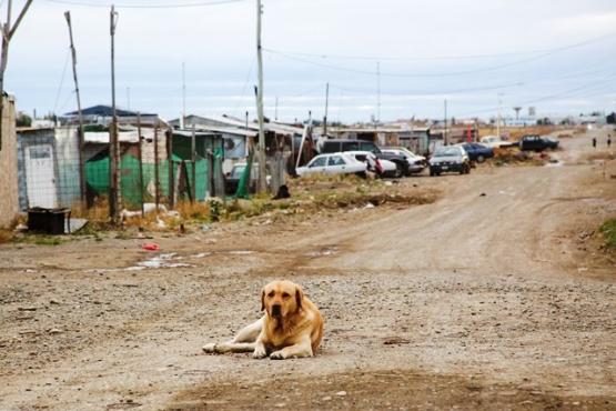 Asentamiento en 2016 (archivo)