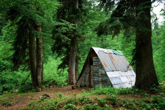 Perdieron su casa por el coronavirus y ahora viven en el bosque