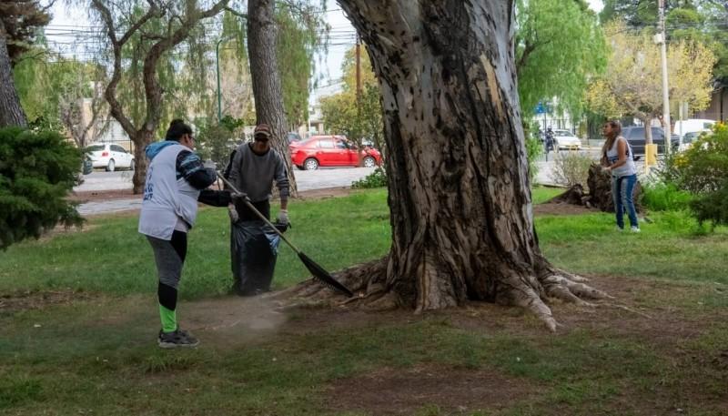 Desinfectan espacios verdes.