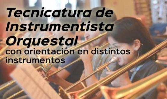 Se realizará la tecnicatura de Instrumentista orquestal