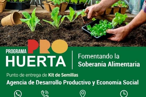 Municipio entrega de kits de semillas a familias, productores y organizaciones locales