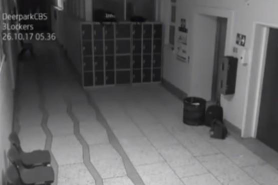 Captan imágenes de un fantasma dentro de una escuela