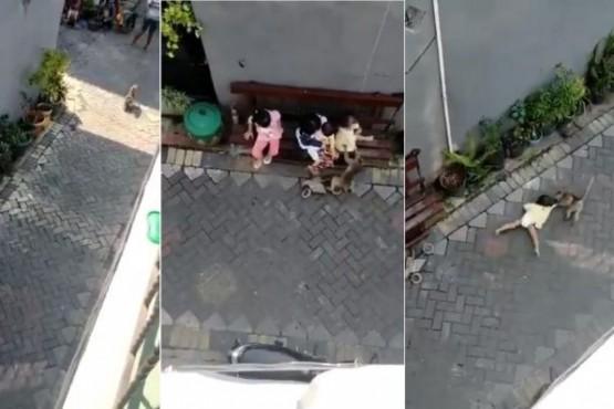 Mono diabólico llegó en moto e intentó secuestrar a una niña.