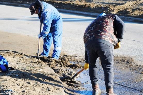 La Secretaría de Servicios reanudó los Operativos de Limpieza