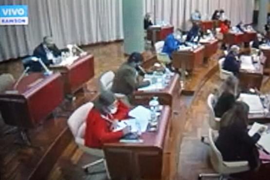 Diputados opositores rechazaron el decreto de ley de emergencia sanitaria