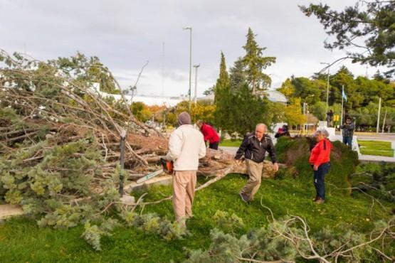 Por el temporal, el municipio brindó asistencia en diferentes sectores