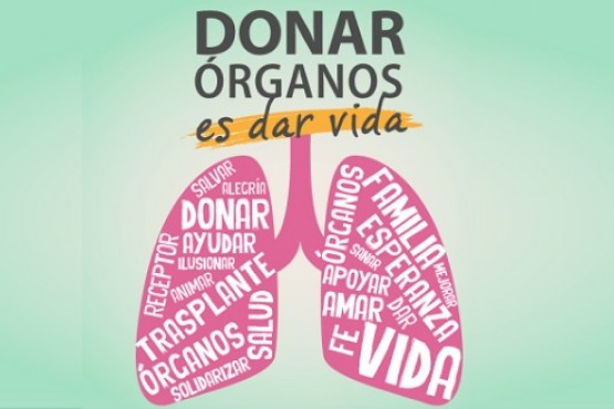 Donación de órganos.