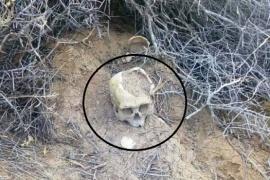 Salieron a correr y encontraron un cráneo humano