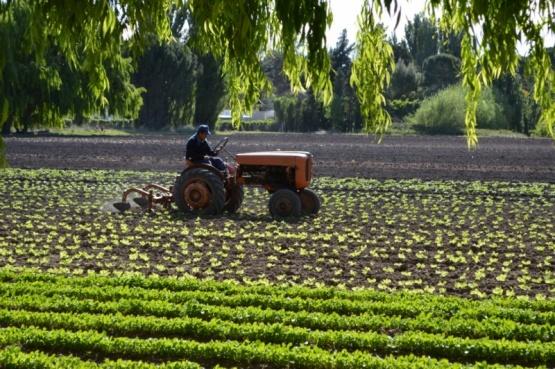El Gobierno de la Provincia prorroga el cobro de cuotas de créditos para productores