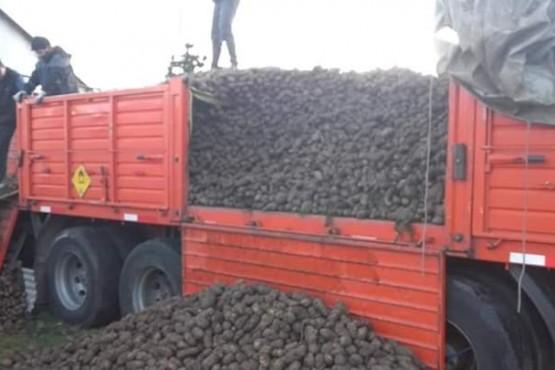 Consejo Pastoral gestionó donación de 30 toneladas de papas