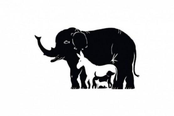 Son 13 los animales que aparecen en la imagen