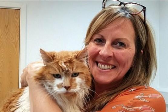 """Murió el gato """"más viejo del mundo"""" a los 31 años"""