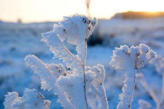 El Calafate con la temperatura más baja del país: -9.8 ºC