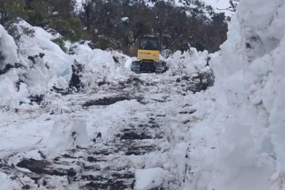 Provincia asistió a pobladores aislados por la nieve