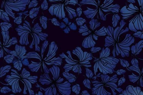 Encuentra las cinco libélulas escondidas entre las flores