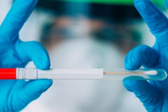Chubut registró 242 casos nuevos de coronavirus