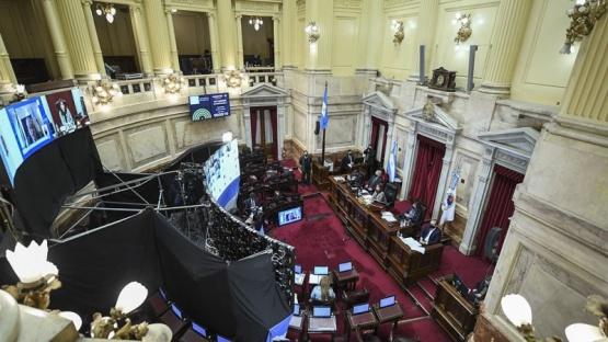 El Senado sesiona para aprobar la promoción de la donación de plasma