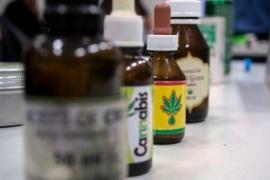 Cannabis medicinal: esperan avanzar pronto en la legislación