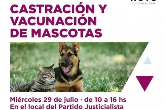 Nueva jornada de vacunación y castración de mascotas