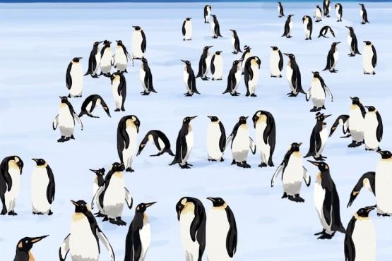 Reto: Encontrar a los cuatro pingüinos con sombrero en el menor tiempo posible