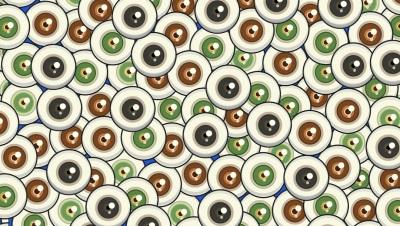 Reto viral: encontrar los cinco ojos de gatos