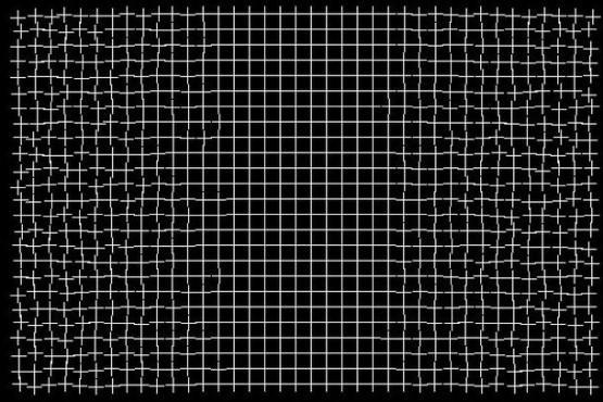 Impresionante ilusión óptica de una rejilla que se repara ante el ojo humano