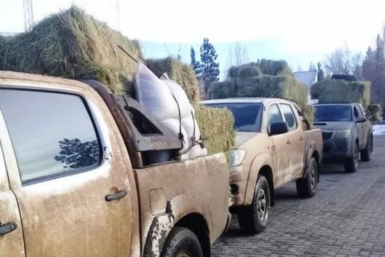 Gobierno del Chubut entregó fardos de pasto a productores de Cushamen