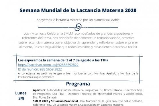 "Salud realiza charlas virtuales por la ""Semana de la Lactancia Materna 2020"""
