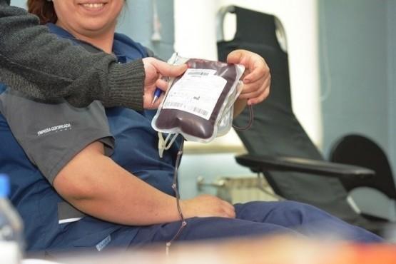Reciben 12 donantes de sangre por día