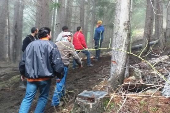 Provincia planifica las tareas de extracción forestal en las reservas de la Comarca Andina
