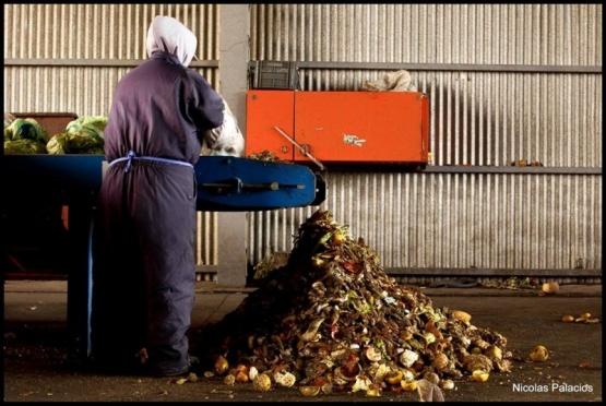 La Planta de Residuos retomó su funcionamiento