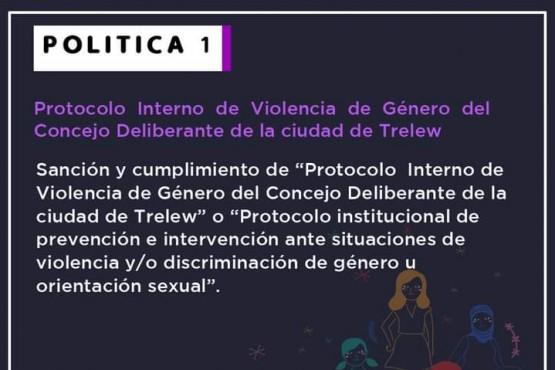 Se aprobó el protocolo ante situaciones de violencia por motivos de género