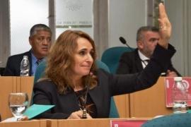 """Ricci contra el """"ninguneo"""" de diputados oficialistas: """"La última sesión fue obscena y grosera"""""""