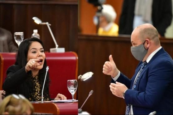 Goit y Sastre se enfrentaron en una Legislatura que prohibió el uso del dióxido de cloro