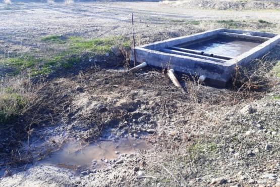 El Ministerio de Ambiente realizó controles en una planta procesadora de pescado