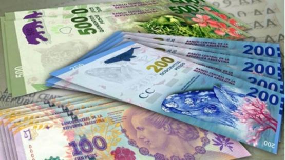 Quiénes podrían acceder al Ingreso Universal de 17 mil pesos