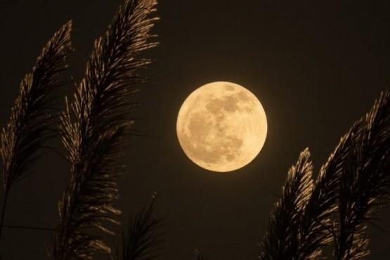 Luna llena de septiembre: qué signos del zodiaco se verán afectados