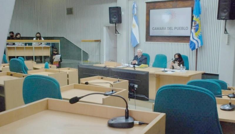 Sesión virtual en Diputados.