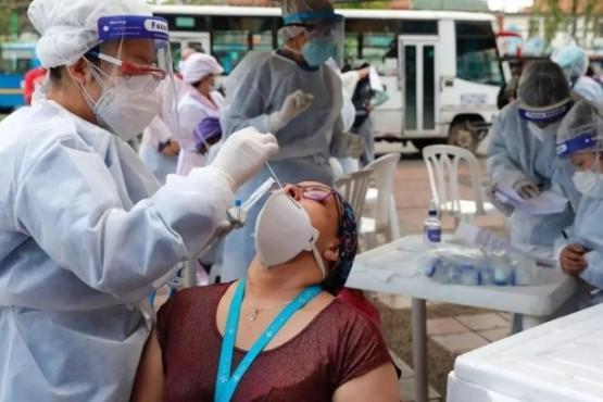 OMS: en octubre y noviembre aumentará el número de muertos por coronavirus