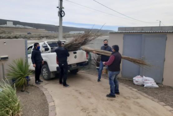 Cavaco entregó ejemplares de álamos para el plan forestal del barrio Los Arenales