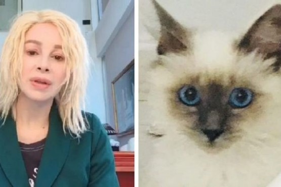 El gato de Nacha Guevara es el nuevo furor en instagram