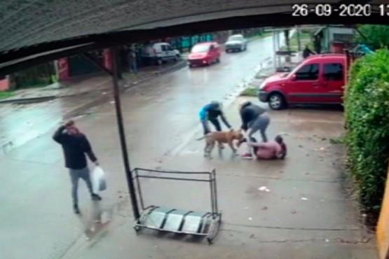 Brutal ataque de un pitbull a una nena de 7 años en San Miguel