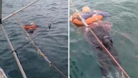 Encontraron viva y flotando en el mar a una mujer que estuvo desaparecida durante dos años